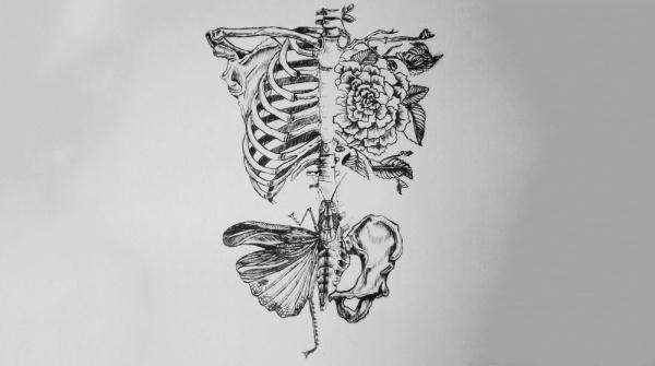 jekabsonsdotcom_wagars_sidrabeneslasts_cover_art_design_cd_jewelcase_00_theloveliestbones